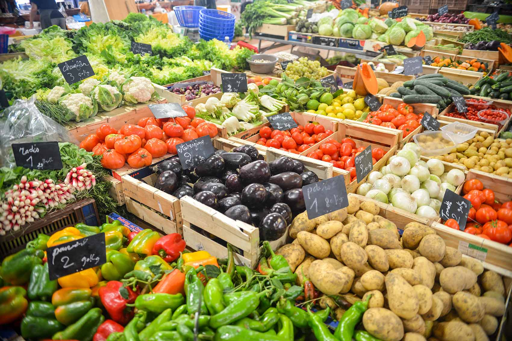 Gauging the sustainability of online grocery portals in India
